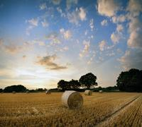 Stunning Summer sunset landscape over feild of hay bales Stock Photos