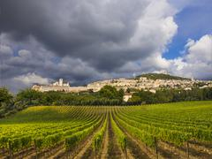 Vineyards in front of Assisi, Italy - stock photo