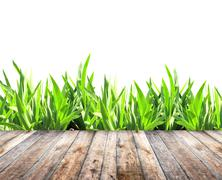 Summer grass and old wooden planks - stock photo