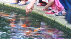 KL Bird Park - Visitors Playing And Feeding Koi Fishes Stock Footage