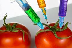 Genetic modification - stock photo