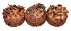 Individual Chocolate Sponge Cakes - stock photo