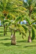 Stock Photo of Africa, picturesque area of La Pointe Aux Canonniers in Mauritiu