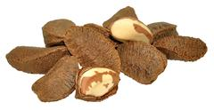 Brazil Nuts In Shells Stock Photos