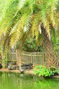 Stock Photo of picturesque area of la Pointe aux canonniers in Mauritius