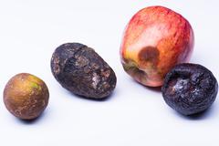Spoiled fruits isolated on white. Apple, mango, lime, plum - stock photo