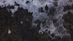 Grass field in early spring covered with ice Stock Footage