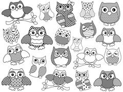 Amusing and funny owls, black outlines Stock Illustration