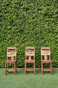 Decorate three wooden chairs against the green small tree wall. Stock Photos