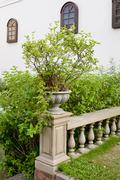 ceramic flowerpots on banister - stock photo