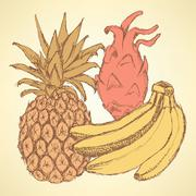 Sketch exotic fruits in vintage style Stock Illustration