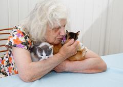 The grandmother holding three  kittens - stock photo