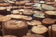 Teak wood stump background Stock Photos