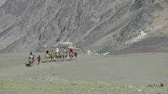 Tourists on Camel tour in Nubra Valley,Diskit,Ladakh,India Stock Footage