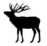 Deer - stock illustration