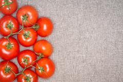 Overhead of Red Ripe Tomatoes on the Vine - stock photo