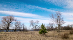 Sunny day with beautiful  slow clouds .4K (4096x2304)   Time lapse without birds Stock Footage