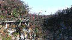 Walk at Tianmenshan. Zhangjiajie Mountains. China Stock Footage
