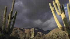 4K Spectacular Cloudscape Arizona Saguaro Cactus Landscape Time Lapse Stock Footage