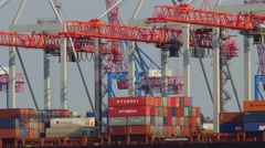 Timelapse of gantry cranes working in container terminal, loading and unloading Stock Footage