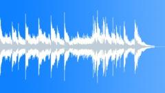 Jeremy Sherman - Backwater (30-secs version) Stock Music