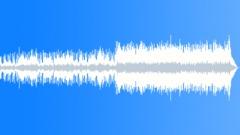 Jeremy Sherman - Bombay Blues - stock music