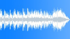 Jeremy Sherman - Dobro Shuffle (30-secs version) - stock music