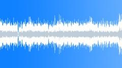 Stock Music of Jeremy Sherman - Dobro Shuffle (Loop 03)