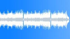 Jeremy Sherman - Dobro Shuffle (Underscore) Stock Music