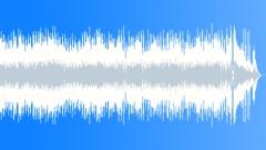 Jeremy Sherman - Juke Joint (37-secs version) - stock music