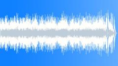 Jeremy Sherman - Juke Joint (Underscore) Stock Music