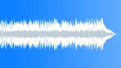 Jeremy Sherman - Mudskipper (30-secs version) - stock music
