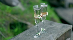 Two glasses with sparkling wine Stock Footage