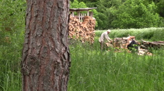 Villager chop the thick willow brackets near the woodshed Stock Footage