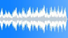 Prince Of Ponds (30-secs version) Stock Music