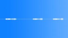 birds in moorland 02 - sound effect
