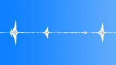 bird park twittering 04 - sound effect