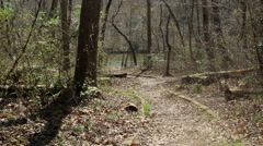 Pathway to river early spring Stock Footage