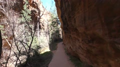 Walking Trail at Zion National Park in Utah - stock footage