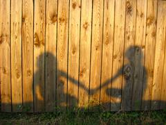 Shadow of the amicable boy and the girl Stock Photos