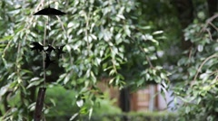 Wind chimes fluttering in the wind in traditional Japanese house Stock Footage