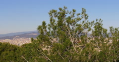 Sunny day barcelona panorama from pine on the montjuic 4k spain Stock Footage
