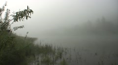 Foggy morning on the river Stock Footage
