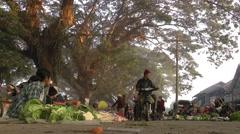 Big trees and traffic,Bhamo,Burma Stock Footage