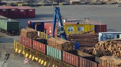 Lifting machine unloading wood logs from freight cars in port Stock Footage