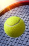 .Ball and Racket Stock Photos