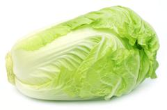 Fresh Chinese Cabbage Stock Photos