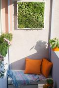 House plants on the balcony Stock Photos