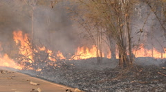 Destroyed by burning near local road. Stock Footage