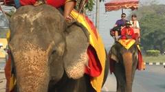 Tourists riding an elephant,Ayuthaya,Thailand - stock footage